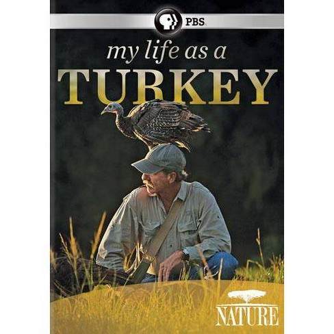 Nature: My Life As A Turkey (DVD) - image 1 of 1