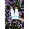 Raw Sugar Shampoo Coconut + Agave + Sweet Almond Milk - 18 fl oz - image 3 of 3