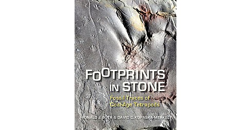 Footprints in Stone : Fossil Traces of Coal-Age Tetrapods (Paperback) (Ronald J. Buta & David C. - image 1 of 1