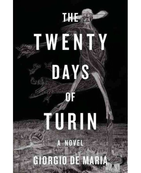 Twenty Days of Turin -  by Giorgio De Maria (Hardcover) - image 1 of 1