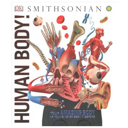 Human Body Dk Smithsonian Knowledge Encyclopedia Hardcover