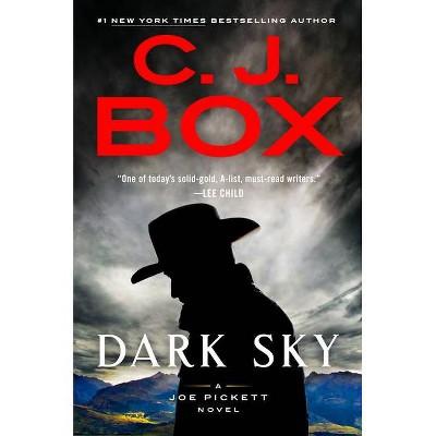 Dark Sky - (Joe Pickett Novel) by  C J Box (Hardcover)