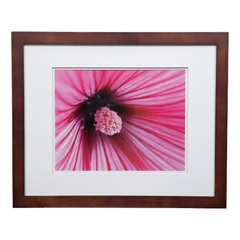 Single Image 16x20 Wide Walnut Frame With Double Mat To 11x14