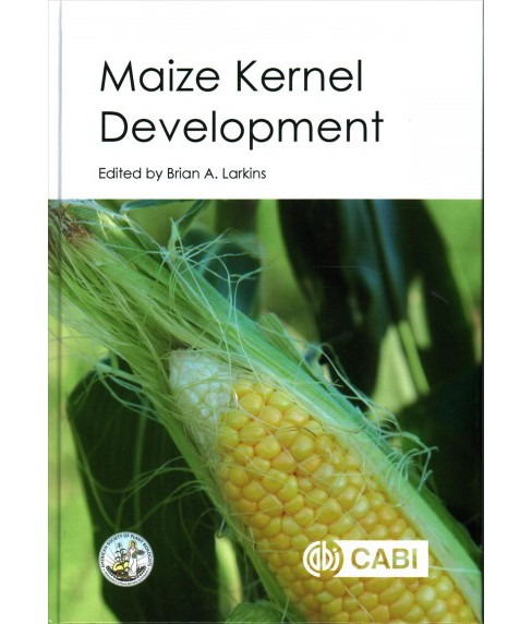 Maize Kernel Development : Current and Future Research (Hardcover) - image 1 of 1