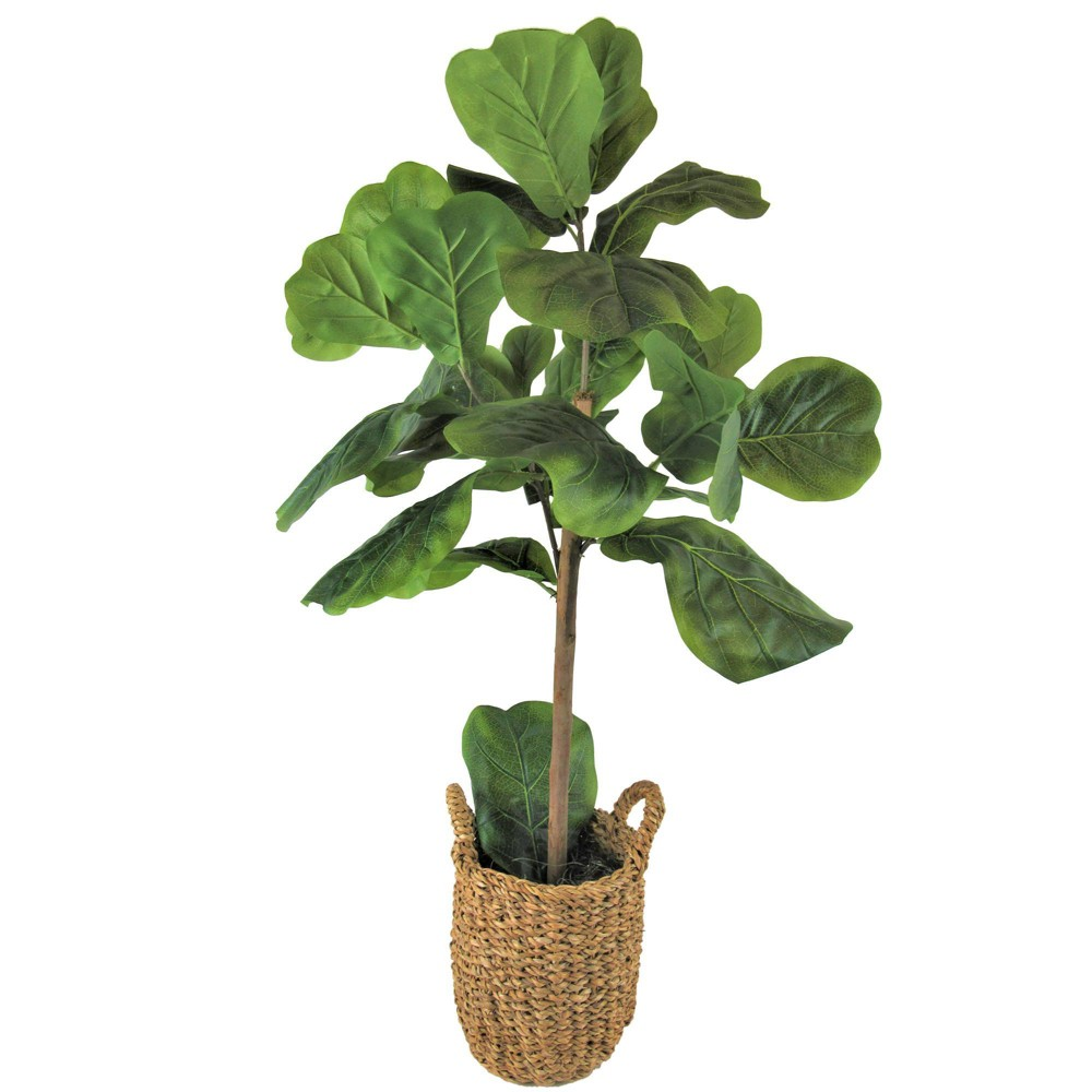 """Image of """"30"""""""" x 16"""""""" Artificial Fig in Basket with Handles Green - LCG Florals"""""""