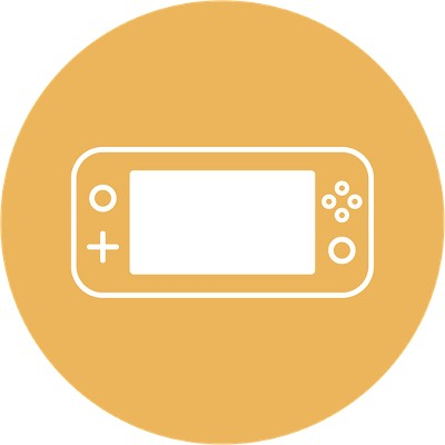 Nintendo Switch Lite Compatible