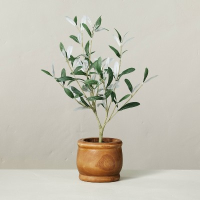 """16"""" Faux Olive Leaf Potted Plant - Hearth & Hand™ with Magnolia"""