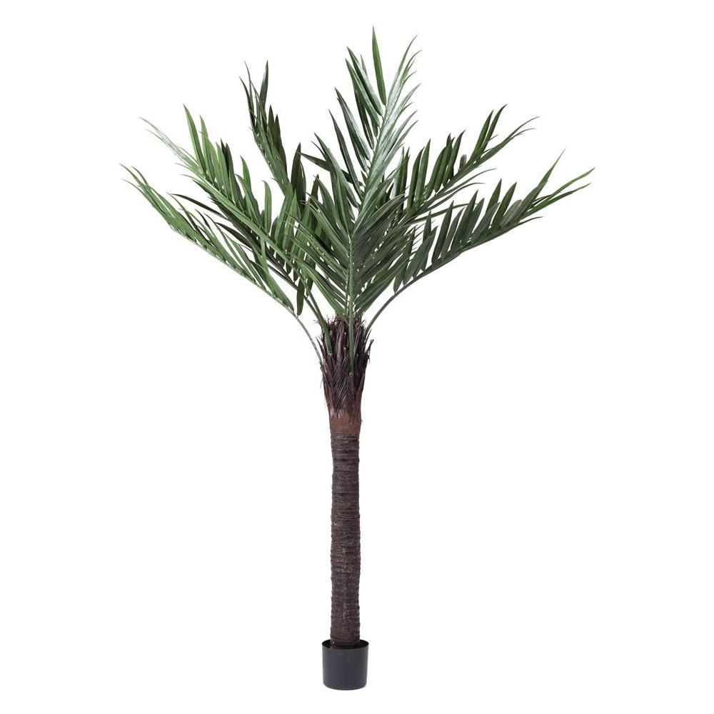 Image of Artificial Kentia Palm (UV) (6ft) Green - Vickerman