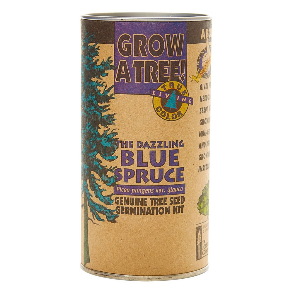 Image of Colorado Blue Spruce Seed Grow Kit - The Jonsteen Company