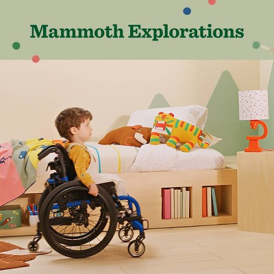 Christian Robinson x Target Mammoth Exploration Collection