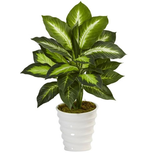 "22"" x 15"" Artificial Dieffenbachia Plant in Swirl Planter - Nearly Natural - image 1 of 3"
