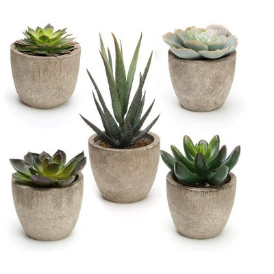 MPM Artificial Succulent Plants Potted, Assorted Decorative Faux Succulent Potted Fake Cactus Cacti Plants with Pots, for Office, Living Room Set of 5