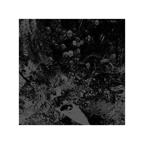 Primitive Man - Split (CD) - image 1 of 1