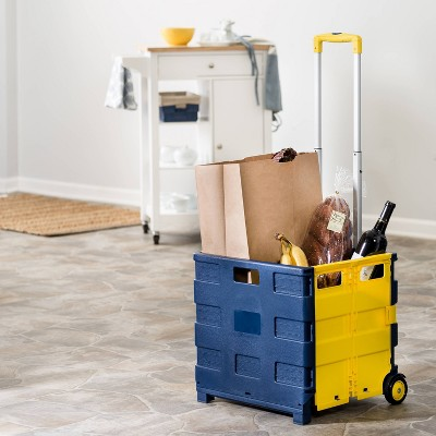 Honey-Can-Do Rolling Folding Carry All Crate