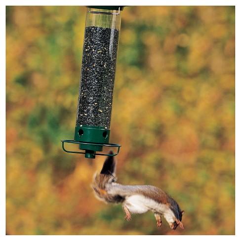 Droll Yankees Yankee Flipper Motorized Squirrel Proof Bird Feeder Green 21 Target
