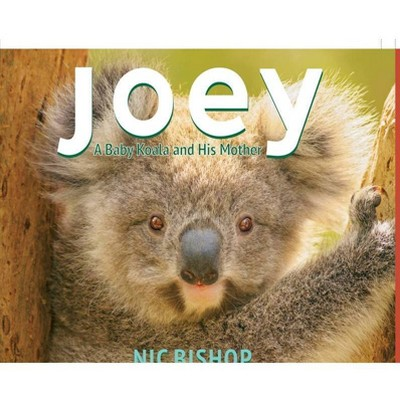 Joey: A Baby Koala and His Mother - by  Nic Bishop (Hardcover)