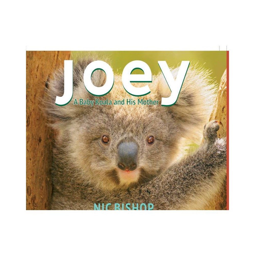 Joey Baby Koala And His Mother By Nic Bishop Hardcover