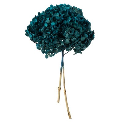 "Vickerman Natural Botanicals 15"" Hydrangea with Multiple Branch Segments, Preserved"