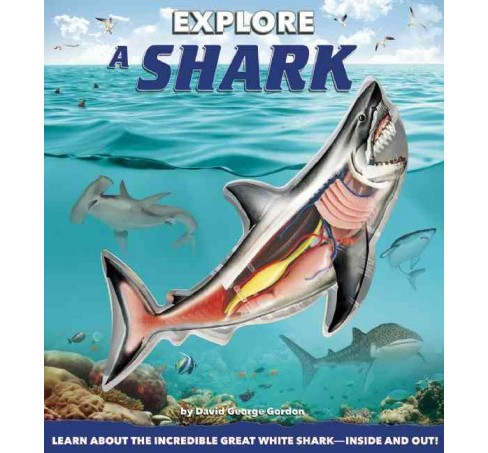 Explore a Shark (Hardcover) (David George Gordon) - image 1 of 1