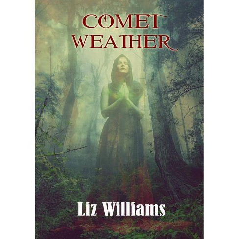 Comet Weather - by  Liz Williams (Paperback) - image 1 of 1