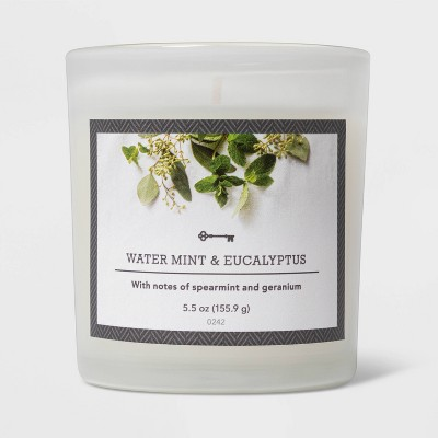 5.5oz Glass Jar Watermint and Eucalyptus Candle - Threshold™