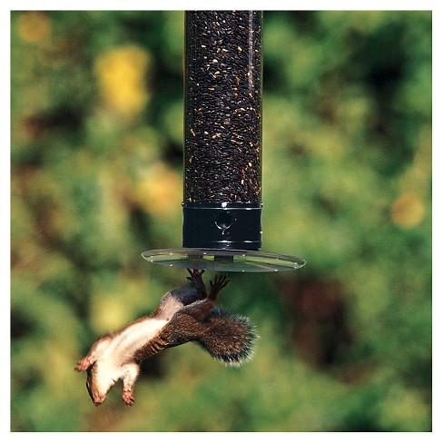 Droll Yankees Yankee Tipper Collapsing Tray Squirrel Proof Bird Feeder Black 21 Target