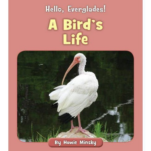 A Bird's Life - (Hello, Everglades!) by  Howie Minsky (Paperback) - image 1 of 1
