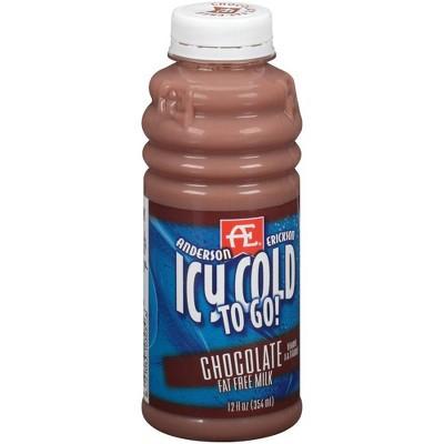 Anderson Erickson Skim Chocolate Milk - 12 fl oz