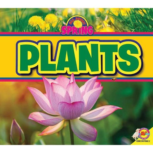 Plants - (All about Spring) by  M J York (Paperback) - image 1 of 1