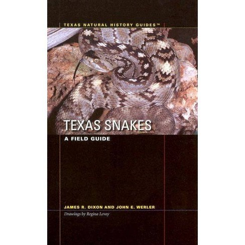 Texas Snakes - (Texas Natural History Guides) by  James R Dixon & John E Werler (Paperback) - image 1 of 1