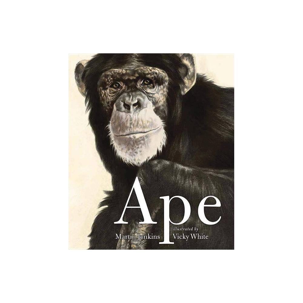Ape By Martin Jenkins Paperback