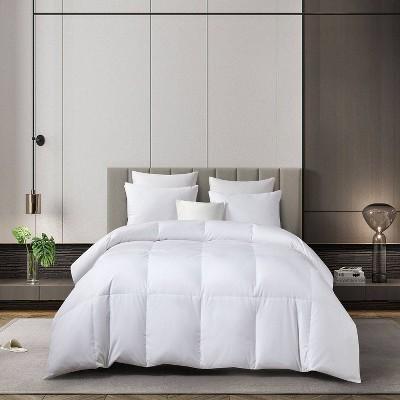 Light Warmth 300 Thread Count RDS Down Comforter - Martha Stewart
