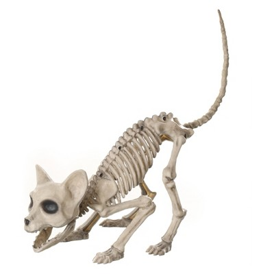 9'' Halloween Cat Skeleton - Hyde and Eek! Boutique™