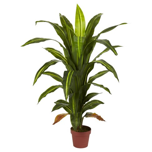 "Nearly Natural Dracaena Silk Plant Green (Real Touch) (4"") - image 1 of 1"