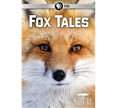 Nature:Fox Tales (DVD) - image 1 of 1