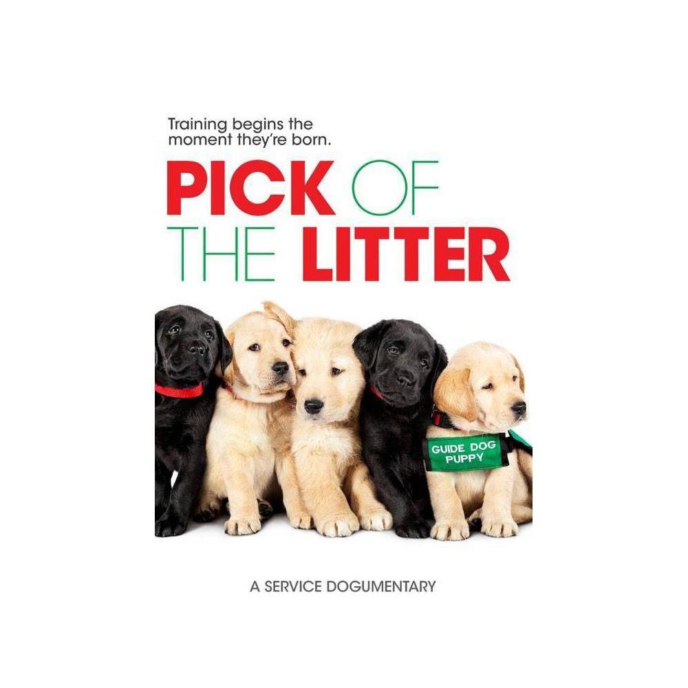 Pick Of The Litter Dvd