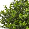 Boxwood Evergreen Artificial Plant In White Vase - Nearly Natural - image 2 of 3