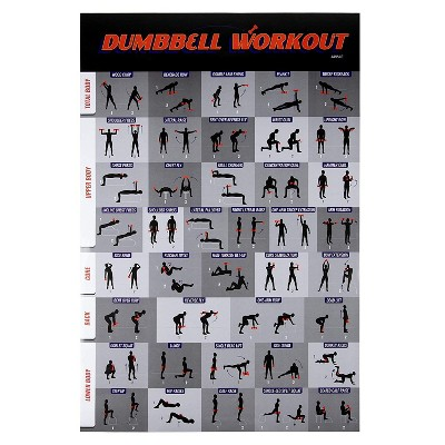 Juvale Dumbbell Workout Poster, Fitness Exercise Guide for Home Gym (20 x 30 In)