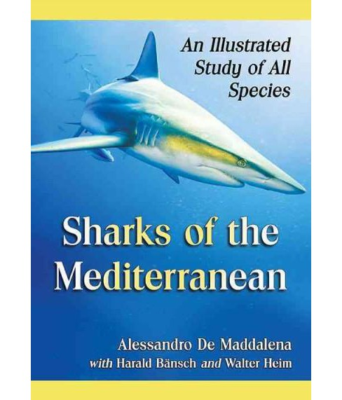 Sharks of the Mediterranean : An Illustrated Study of All Species (Paperback) (Alessandro De Maddalena) - image 1 of 1