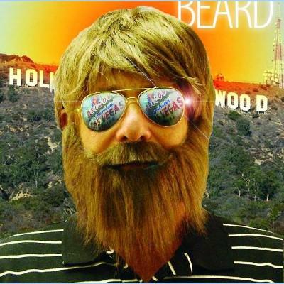 Biblical Beard Set Brown Jesus Christ Wig Adult Mens Costume Accessory Hair NEW