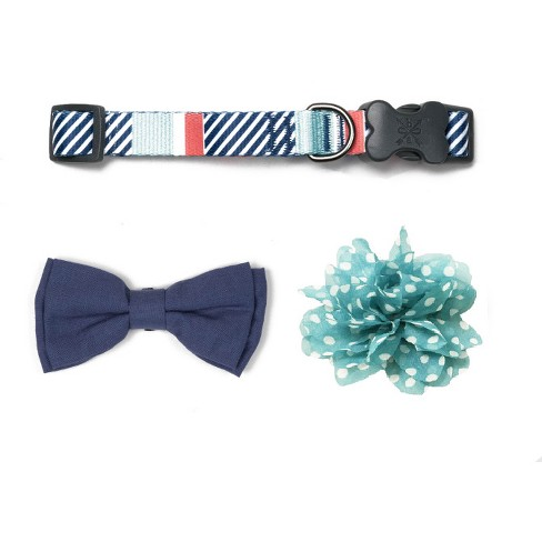 Bow & Arrow Stripe Dog Collar with Bow Tie & Flower - Mint - S - image 1 of 1