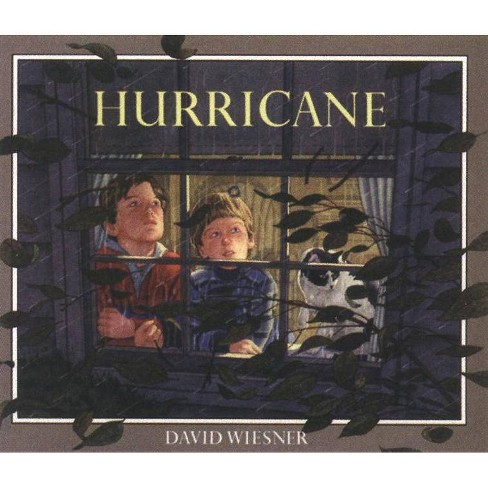Hurricane Book & CD - (Read-Along) by  David Wiesner (Mixed media product) - image 1 of 1