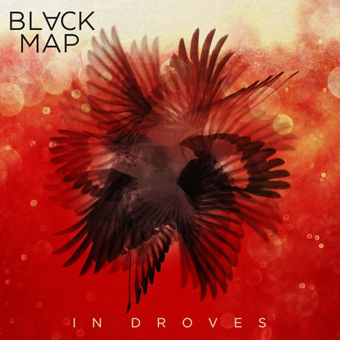 Black Map - In Droves (Vinyl) - image 1 of 1