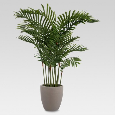 54  Artificial Palm Plant - Lloyd and Hannah