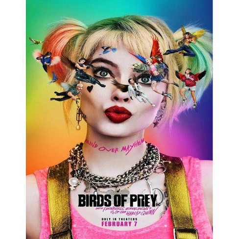 Birds of Prey (Blu-Ray + DVD + Digital) - image 1 of 1
