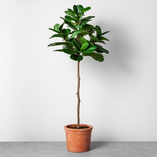 Faux Fiddle Leaf Plant in Terracotta Pot Large - Hearth & Hand™ with Magnolia