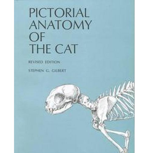 Pictorial Anatomy of the Cat (Revised) (Paperback) (Stephen G. Gilbert) - image 1 of 1