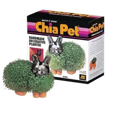 Joseph Enterprises, Inc Chia Pet Grass Planter: Bunny