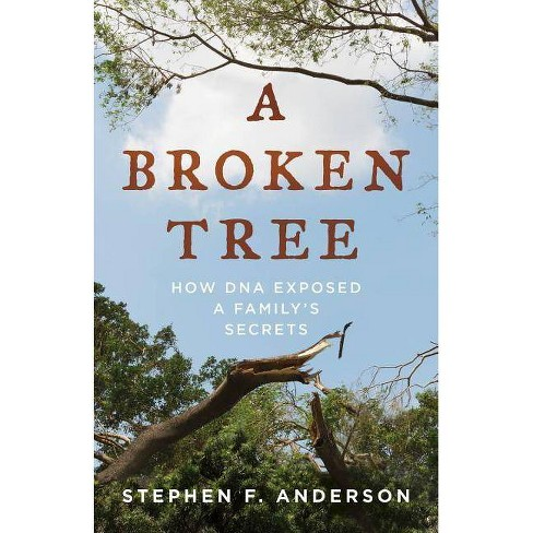 A Broken Tree - by  Stephen F Anderson (Hardcover) - image 1 of 1
