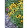 "18"" x 24"" Jardin Half-Round Supports, Set of 2 - Gardener's Supply Company - image 2 of 2"